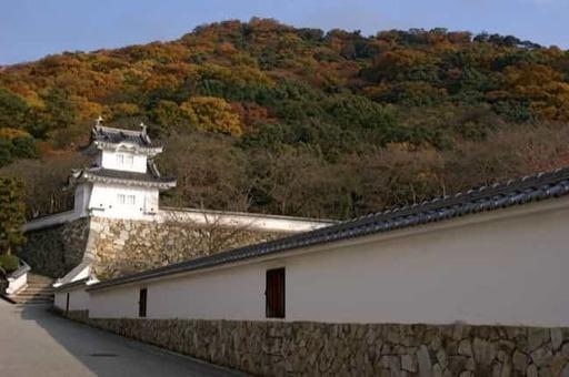 Tatsuno castle01s2040 1528093242
