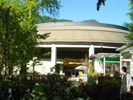 Kawaguchiko saru mawashi theater 1528093321