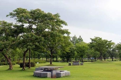 Kibagata park 1528090189