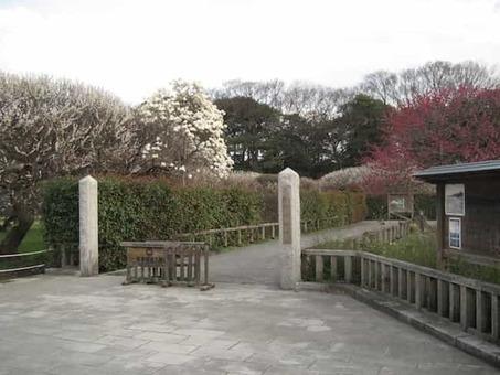 Koshigaya bairin park1 1528091097