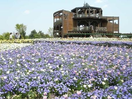 Bihoku kyuryo park 1528088346