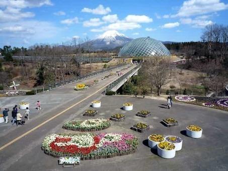 Tottori hanakairo flower park 1528088443