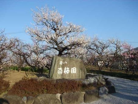 Anpachi hyakubaien2008 2 1528088465