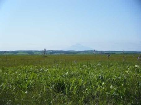 Hokkaido 2c sarobetsu plain 1528092711